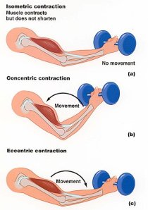 contraction